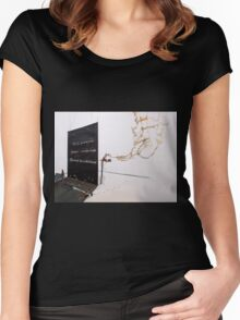 Do you feel...the invisible to the eyes Women's Fitted Scoop T-Shirt