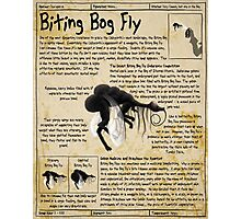 Practical Visitor's Guide to the Labyrinth - Biting Bog Fly Photographic Print