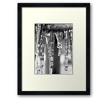 Winter's Icey Jaws Framed Print