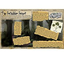 Practical Visitor's Guide to the Labyrinth - The Forbidden Forest Photographic Print