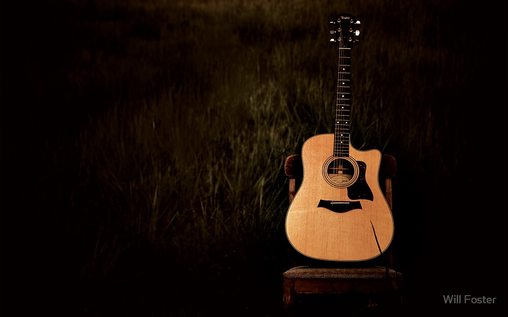 Taylor Guitar by Will Foster