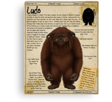Practical Visitor's Guide to the Labyrinth - Ludo Canvas Print