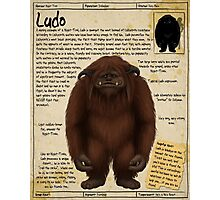 Practical Visitor's Guide to the Labyrinth - Ludo Photographic Print