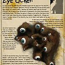 Practical Visitor's Guide to the Labyrinth - Eye Lichen by Art-by-Aelia
