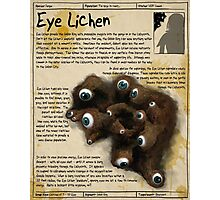 Practical Visitor's Guide to the Labyrinth - Eye Lichen Photographic Print