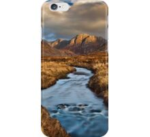 Poison Glen Evening iPhone Case/Skin