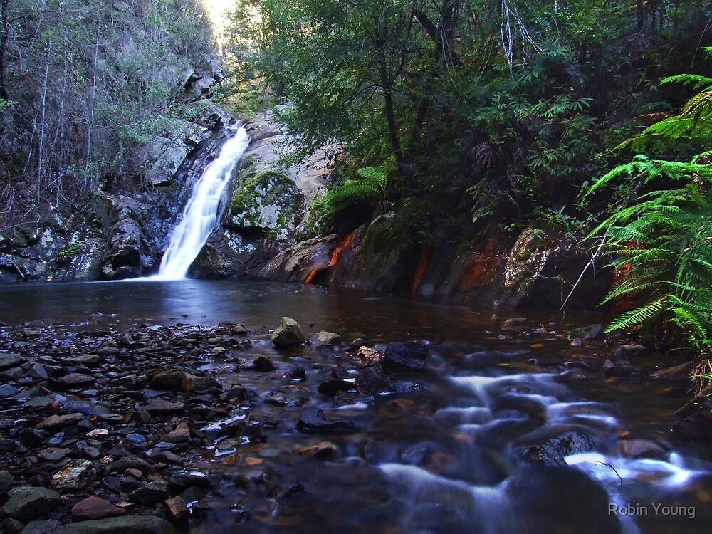 Holwell Falls by Robin Young