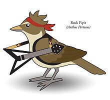 Rock Pipit by Guaranteed Eternal Sanctuary Girl