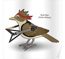 Rock Pipit Poster