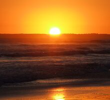 Ocean Sunset by Coralie Alison