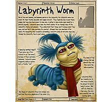 Practical Visitor's Guide to the Labyrinth - The Worm Photographic Print
