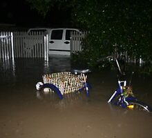 Front Yard Flood by Mark Snelson