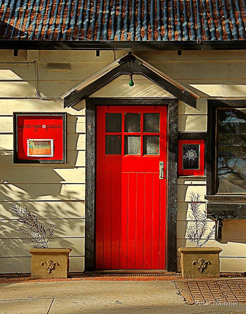 The Red Door by Peter Hammer