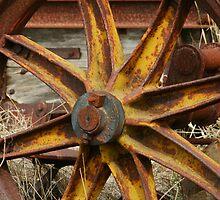 Yellow Iron by Stephen Mitchell