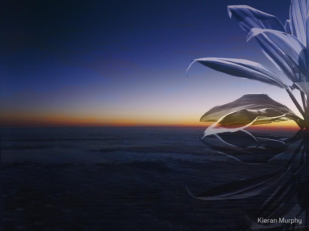 Sky Above by Kieran Murphy