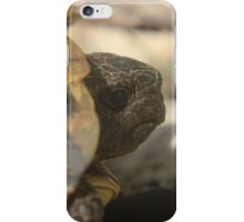 The European tortoise, an increasingly threatened species  iPhone Case/Skin