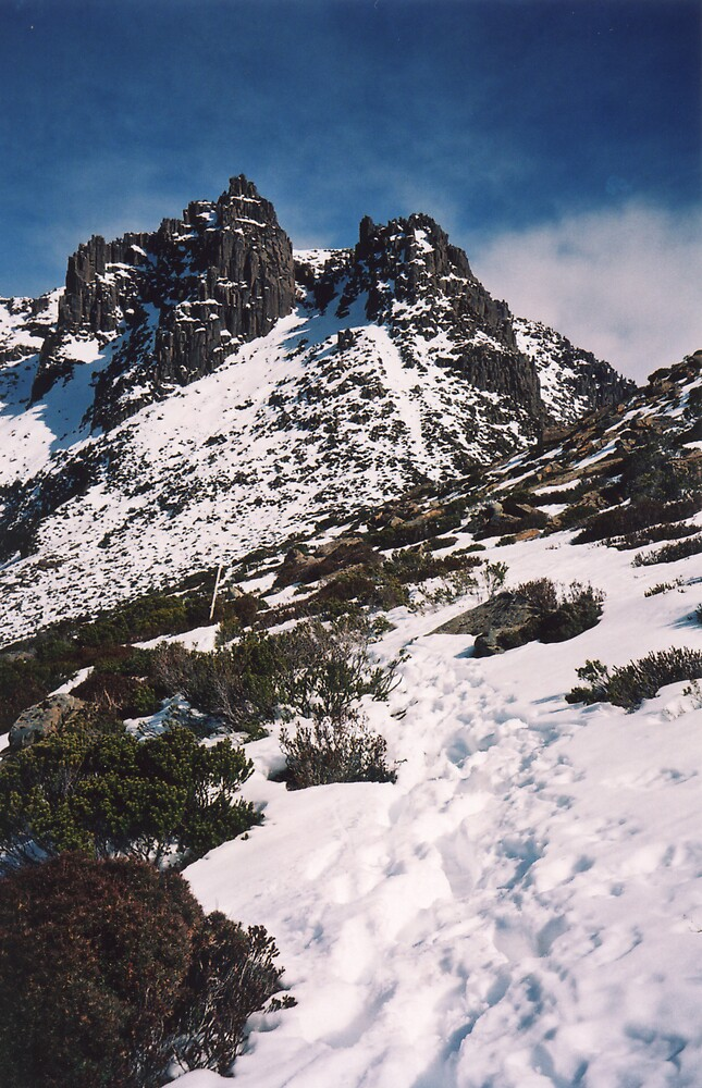 Mt Ossa by Samara  Lee