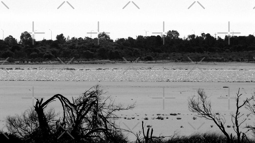 Mandurah Salt Flats #2 by Sandra Chung