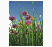Chive flowers on a sunny day Kids Clothes
