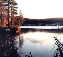 Walden Pond by mkpshay