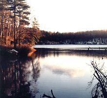 Walden Pond by mkpshay