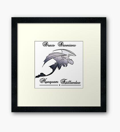 Draco dormiens nunquam titillandus - Toothless Framed Print