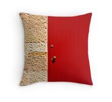 Door Throw Pillow