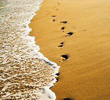 Sands of Life by Vittorio Zumpano