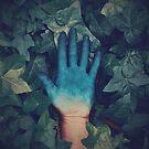 Blue Ivy by James McKenzie