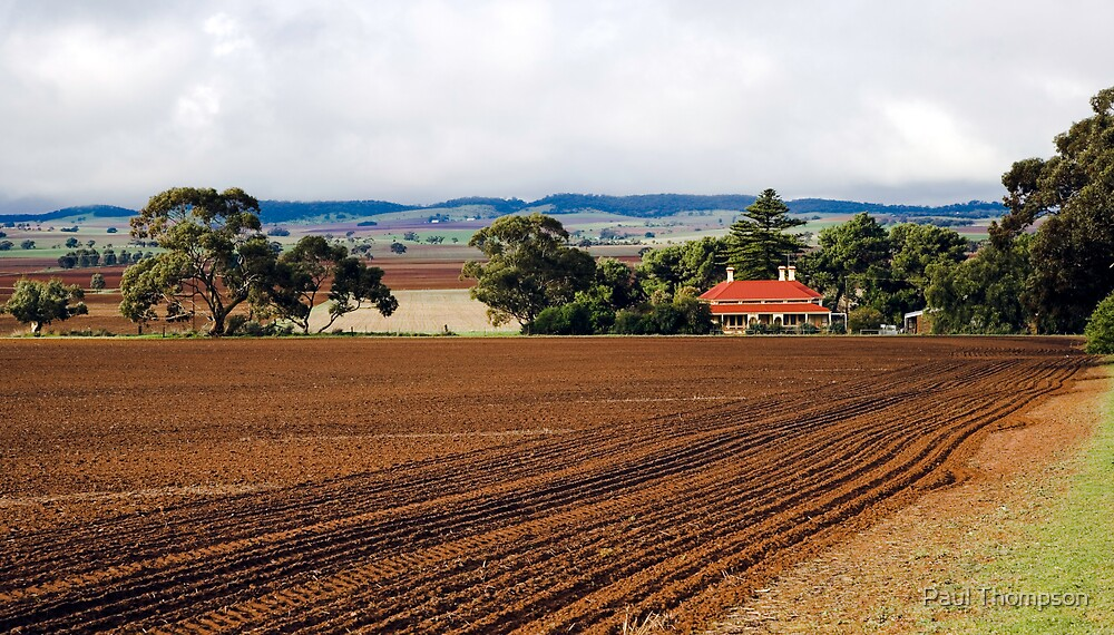 Barossa Valley Farm by Paul Thompson