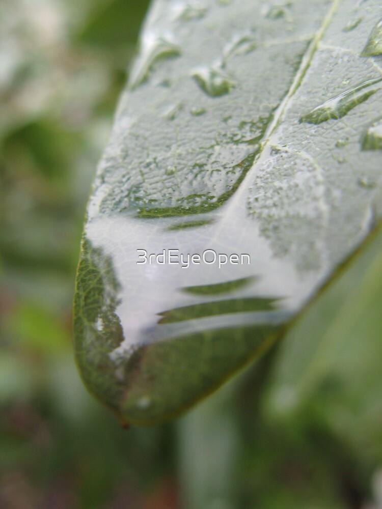 A Feeling of Clarity by 3rdEyeOpen