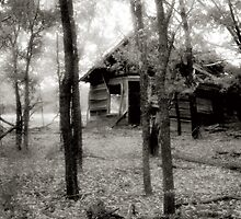 Nobody's Home by Che Graves