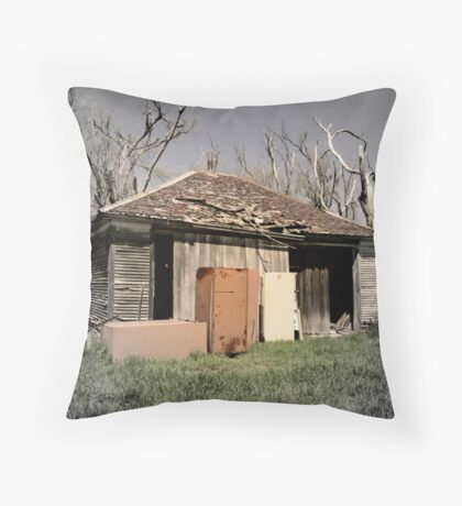 Refrigerator Rights Throw Pillow