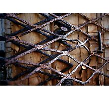 The Innocent Imprisoned Photographic Print