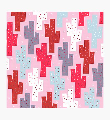 Sweet cactus pattern Photographic Print