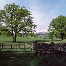 Gate in stone wall Troutbeck England 198405190006 by Fred Mitchell