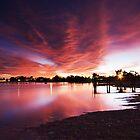 Majestic Morning - Lake Albert, Meningie by KathyT
