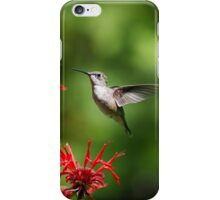 Hummingbird Beauty iPhone Case/Skin