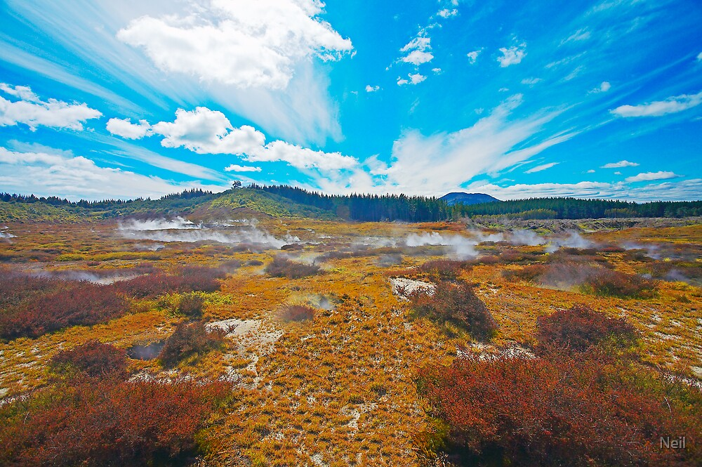 Craters Of The Moon by Neil
