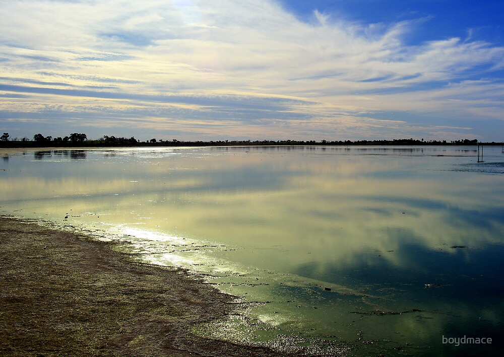 Reflections At Lake Bael Bael Victoria by boydmace