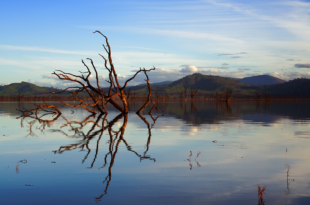 Past Reflections by David Haviland