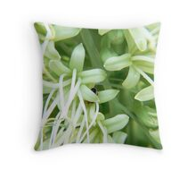 Going for nectar Throw Pillow