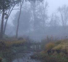 Up the Misty Creek by Cathie Sherwood