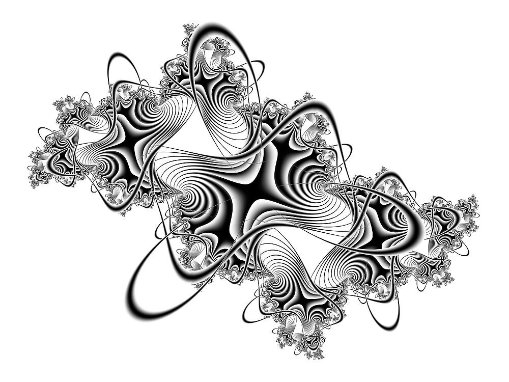 Seashells by Jenni Horsnell