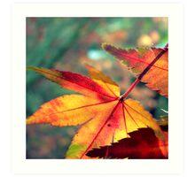 Softly Fall II Art Print
