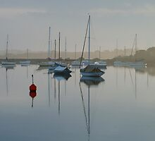 Swan Bay Harbour, Queenscliff by Joe Mortelliti