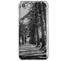 My Favorite Drive iPhone Case/Skin