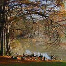 Quintessentially Autumn by Mortimer123