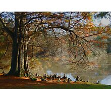 Enchanted Lands Photographic Print