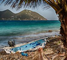 Frenchman's Cay by Andreas Mueller